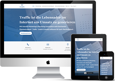 Danilo Erl – The Traffic Guide